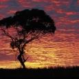 south-australia_image3